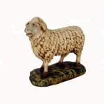 SHEEP STANDING 1