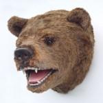 BEAR HEAD 1