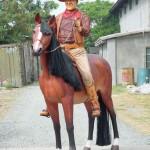 COWBOY ON HORSE 1