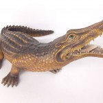 CROCODILE (Small) 1