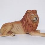 KING LION LYING 1