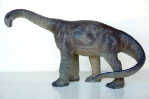 CAMARASAURUS 2 ft HEIGHT 1