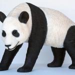 PANDA WALKING 1