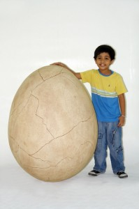 DINO EGG WITH CRACK 1