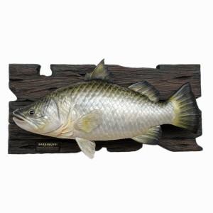 BARRAMUNDI FISH WALL DÉCOR (3 FT