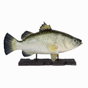 BARRAMUNDI FISH WITH BASE (4 FT