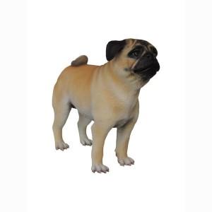 PUG DOG 1