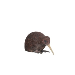 YOUNG KIWI HEAD-DOWN 1